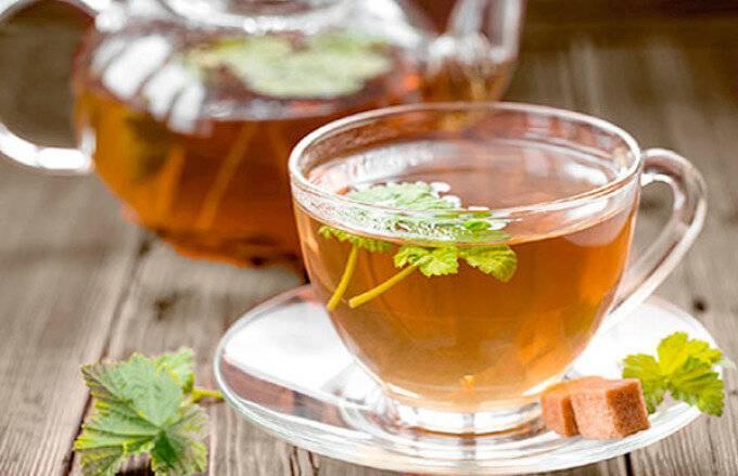 Чай с земляникой: полезные свойства и противопоказания