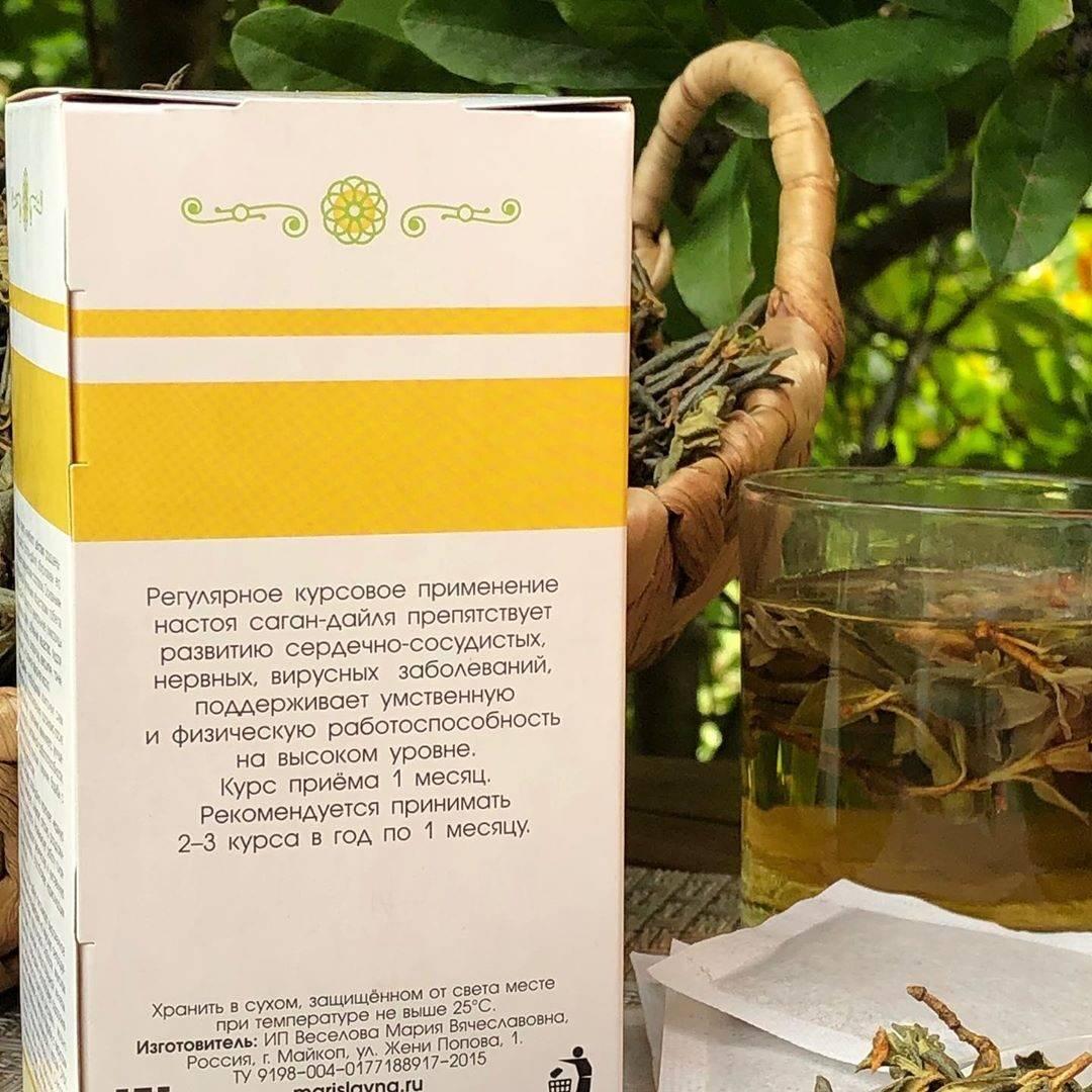 Чай саган дайля полезные свойства и противопоказания