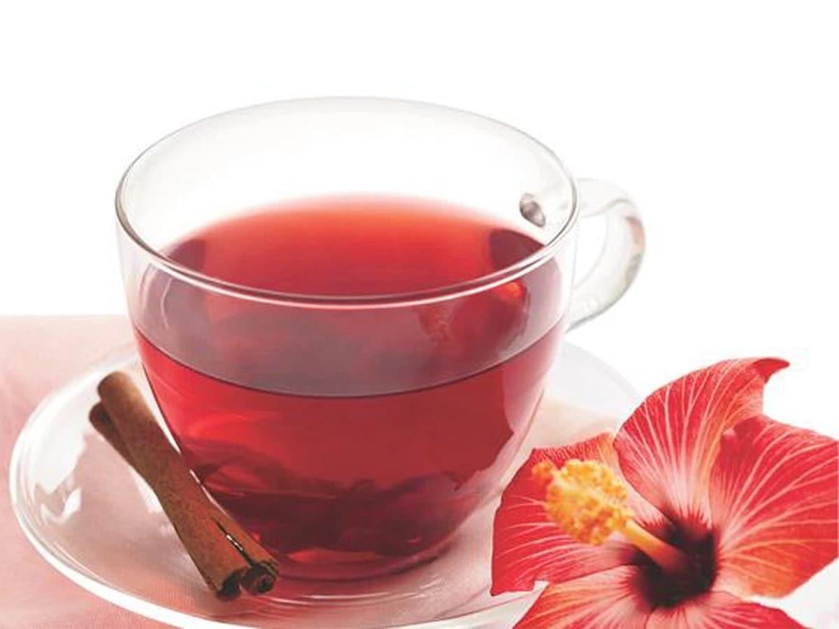 Чай из гибискуса: полезные свойства, противопоказания, приготовление