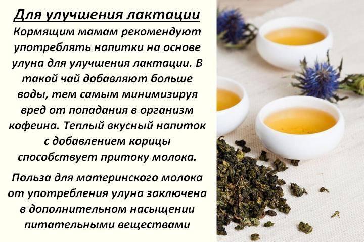 Можно ли кормящей маме зеленый чай для улучшения лактации. зеленый чай для кормящей мамы  .