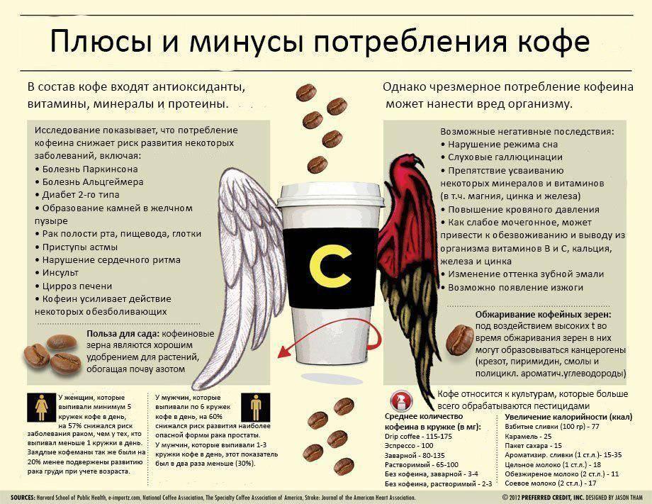 Что будет, если выпить много кофе: вредно ли пить напиток каждый день, почему нельзя много кофе