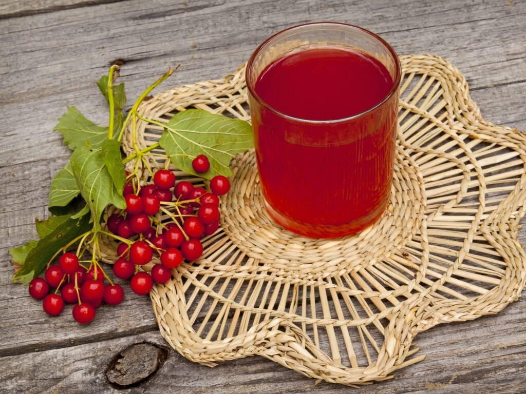 Калина с мёдом: зимняя классика здоровья