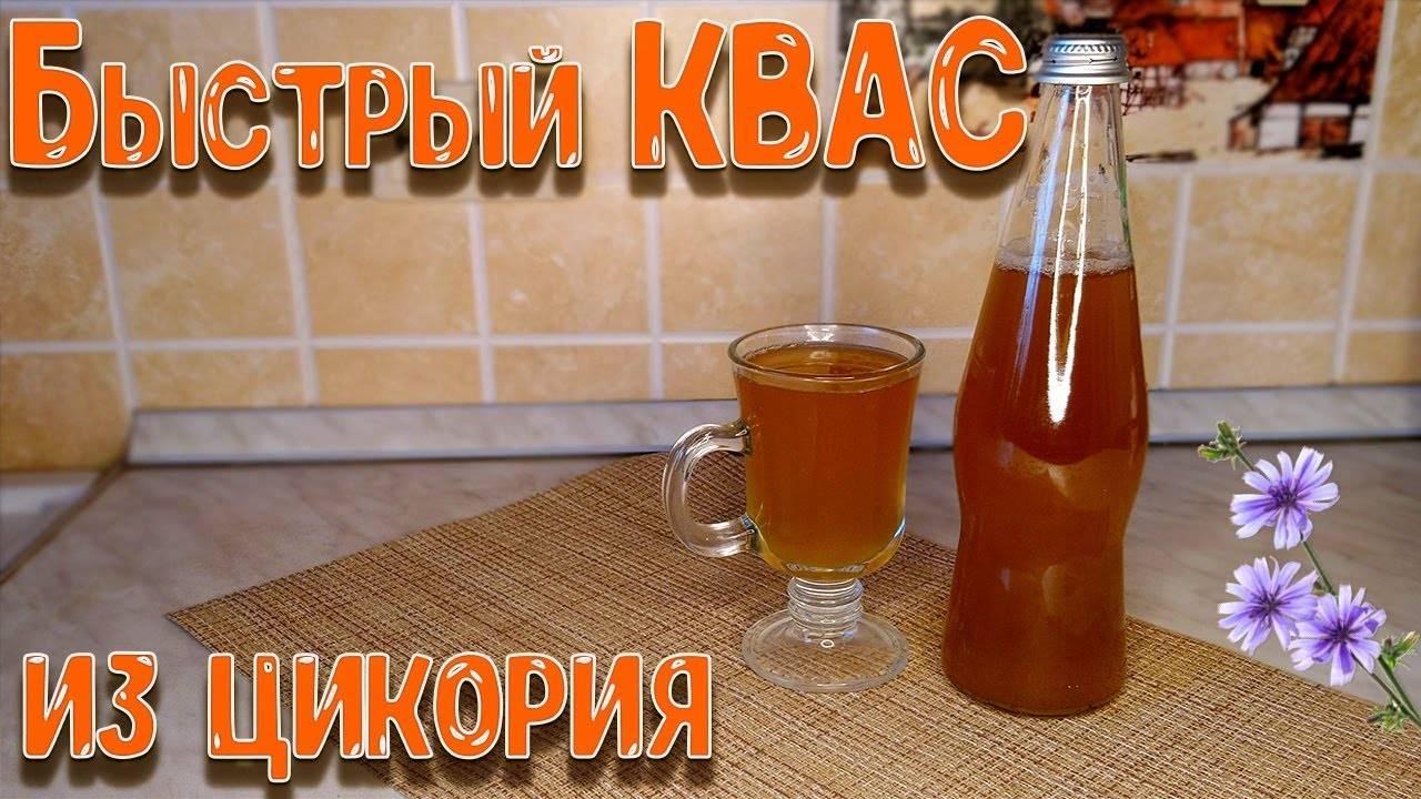 Домашний квас из цикория: рецепты приготовления