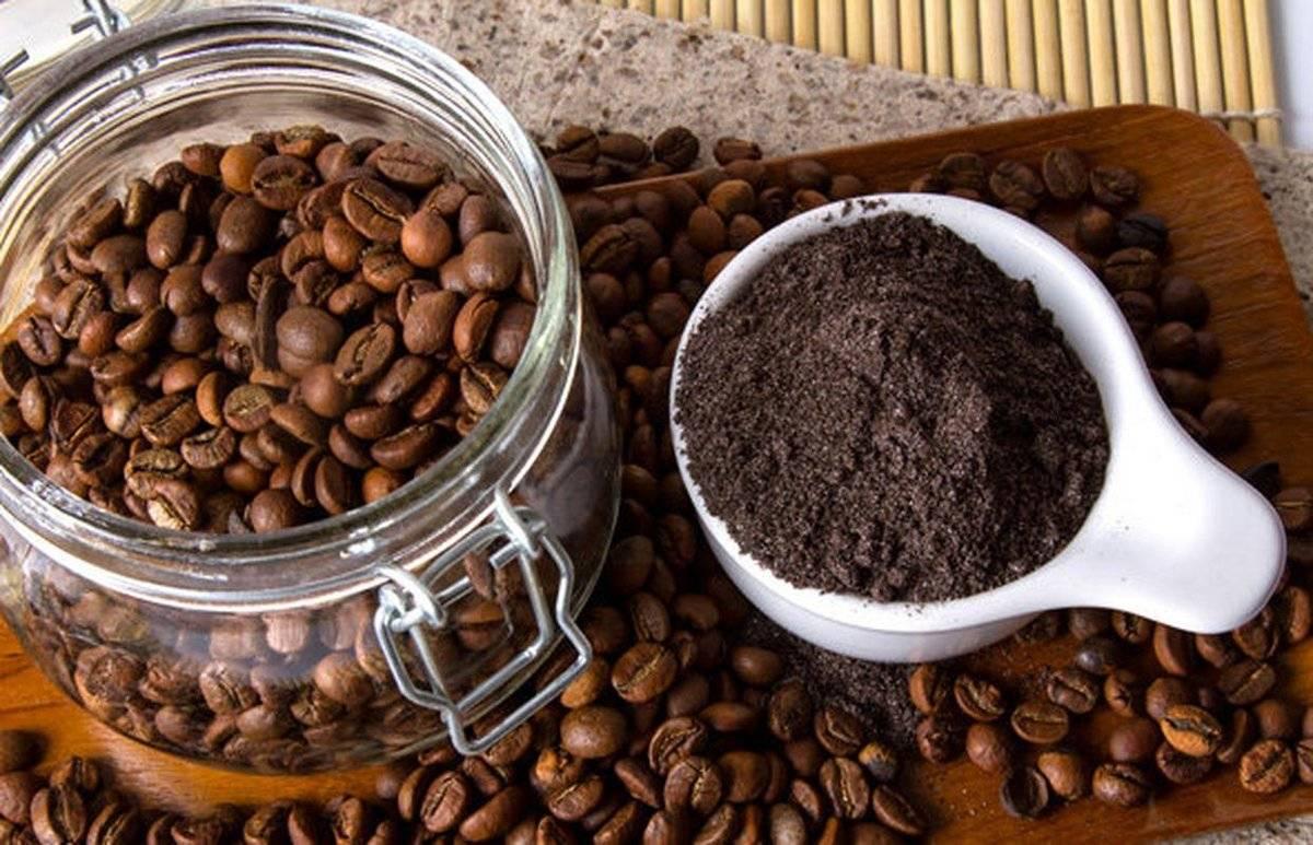 Как и где хранить кофе — сохраняем аромат