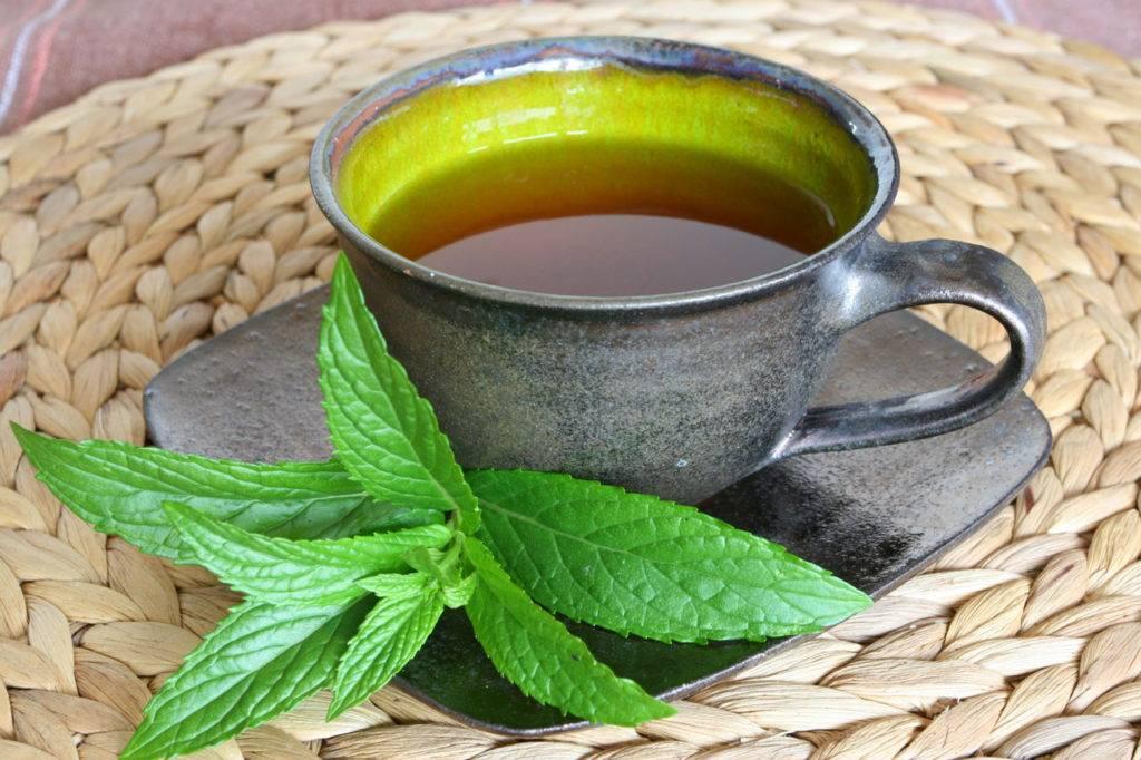 Марокканский чай— мятный аромат востока в вашем бокале