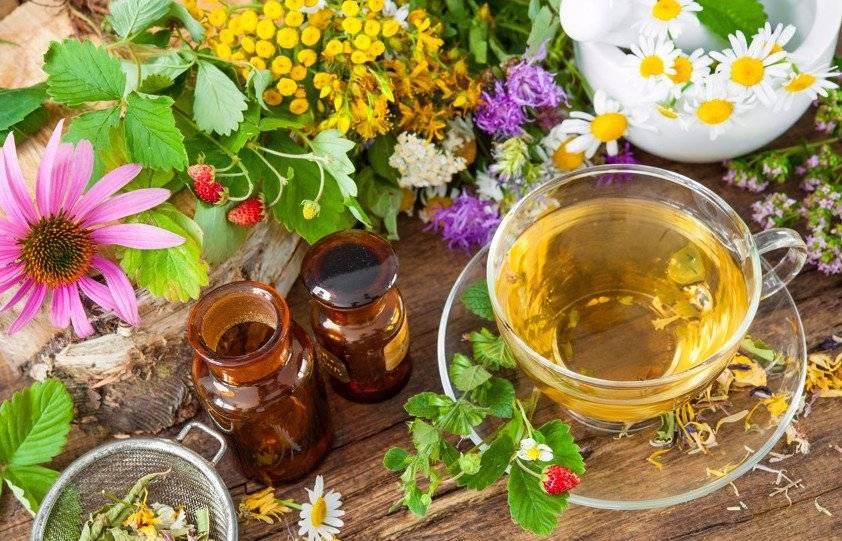 Рецепты успокаивающего чая для снятия напряжения и расслабления