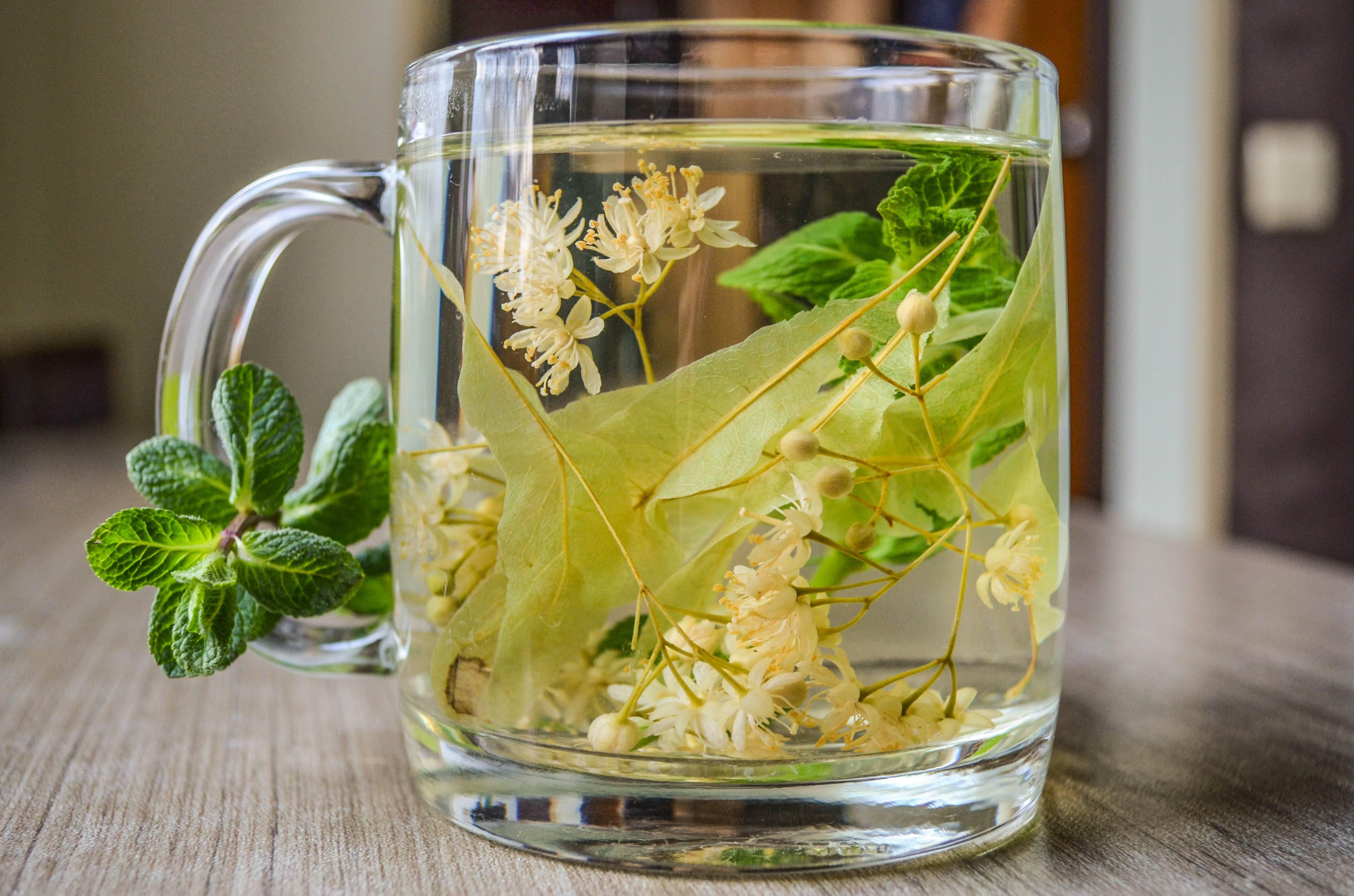 Липовый чай. польза и вред. как заваривать липовый чай