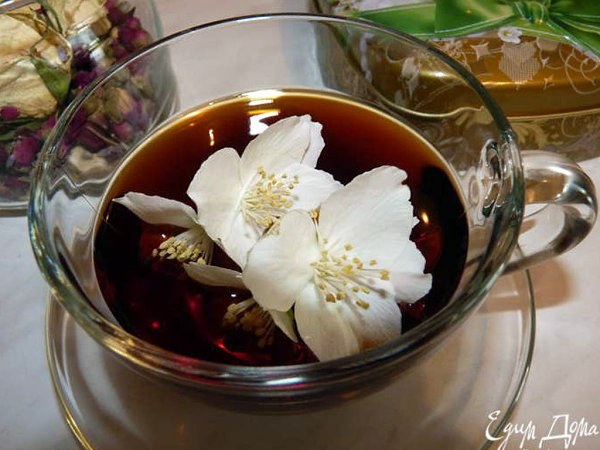 Как правильно собирать цветы жасмина для чая