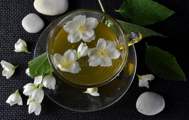 Чай с жасмином: пошаговый рецепт, как засушить жасмин и заварить чай