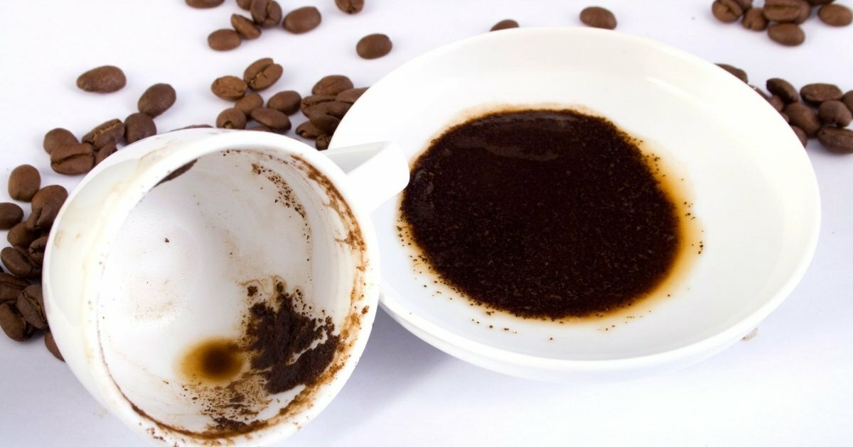 Можно ли есть кофейную гущу после заварного кофе: мнение врачей | женский портал