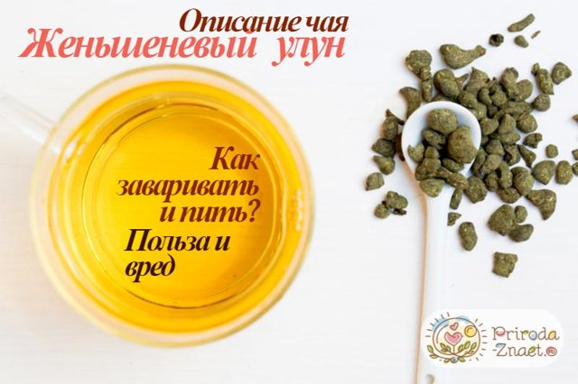Чай с женьшенем: полезные свойства, способы приготовления