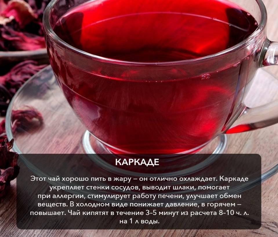 Чай гибискус: полезные свойства и возможные противопоказания