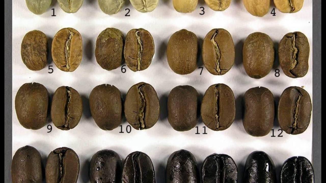 Степень обжарки кофе: на что и как влияет