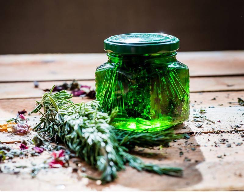 Чай из сосновой хвои жизнь продлевает. | здоровое питание
