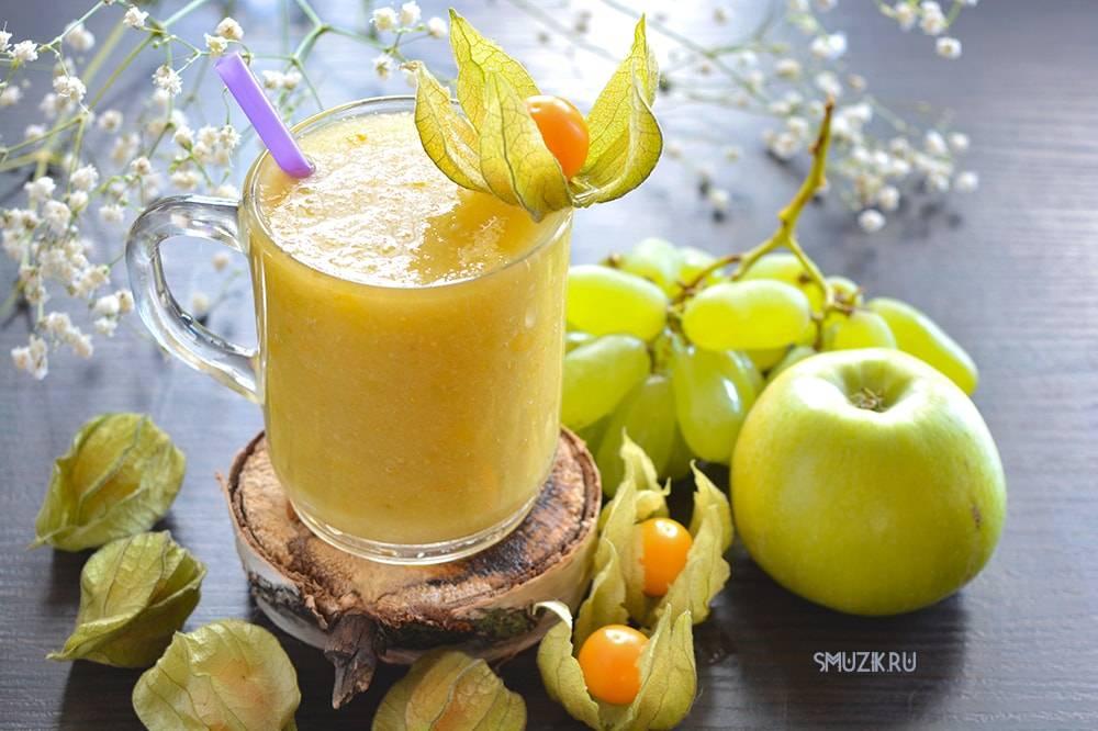 Фруктовый смузи: рецепты из фруктов в блендере, как сделать с молоком, для похудения)