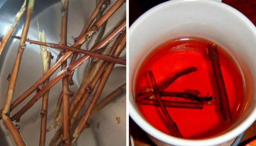 Чай из вишневых веточек: полезные свойства и вред | польза и вред