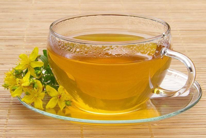 Зверобой: как заваривать чай со зверобоем, польза и вред