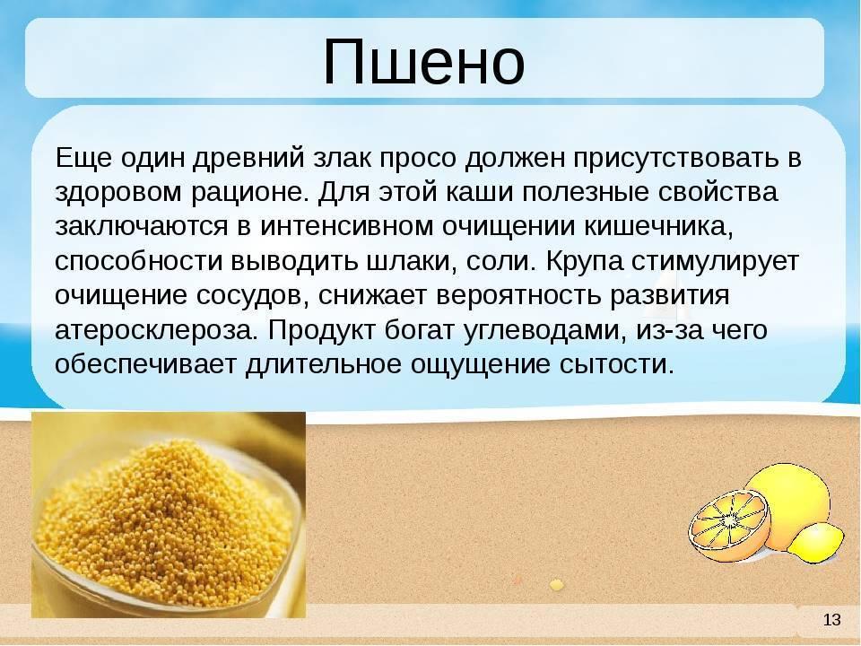 Пшенная каша: польза и вред, рецепты на воде, молоке, с тыквой, калорийность   zaslonovgrad.ru