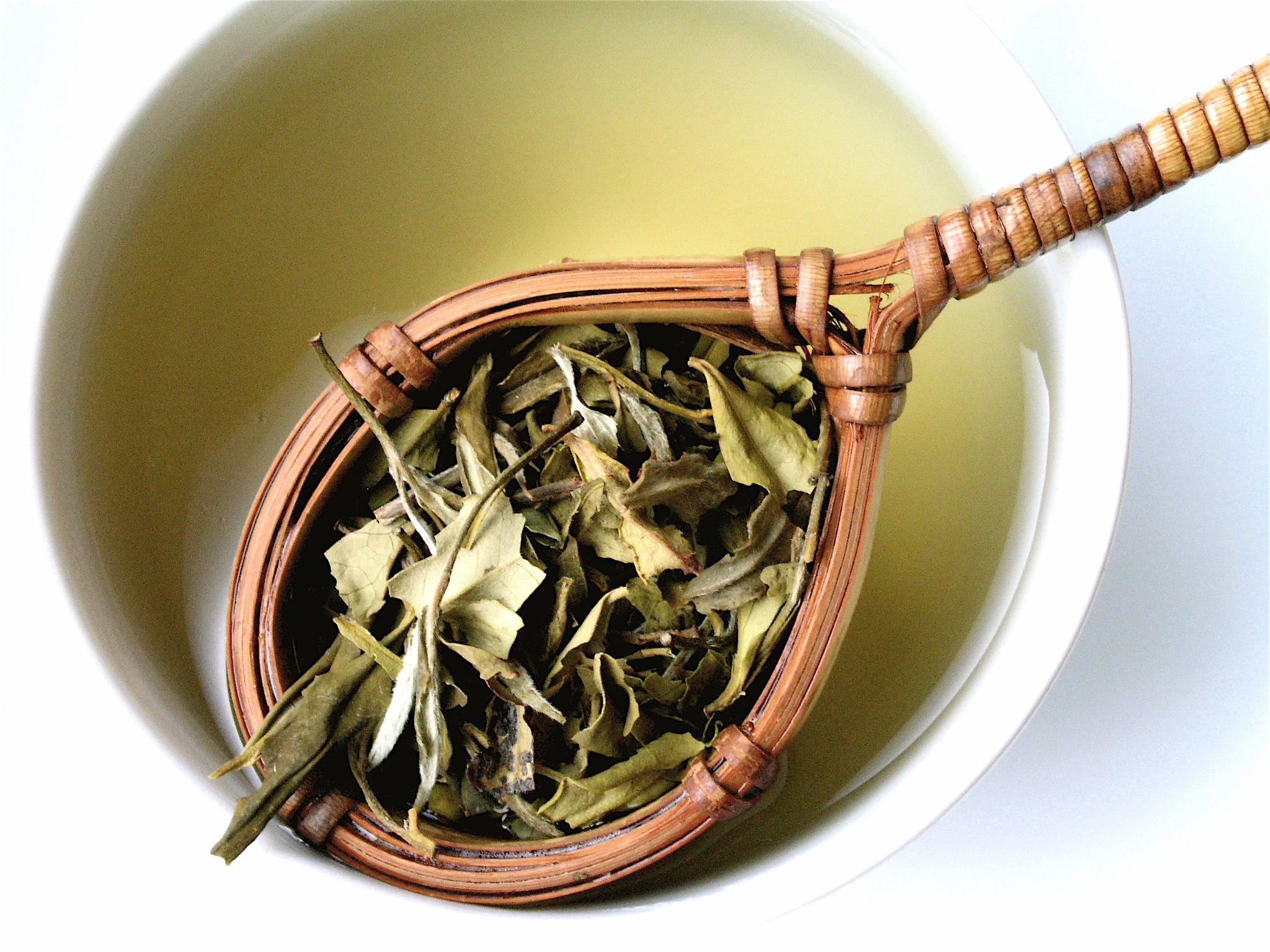 Белый чай: свойства напитка, польза и вред | на всякий случай
