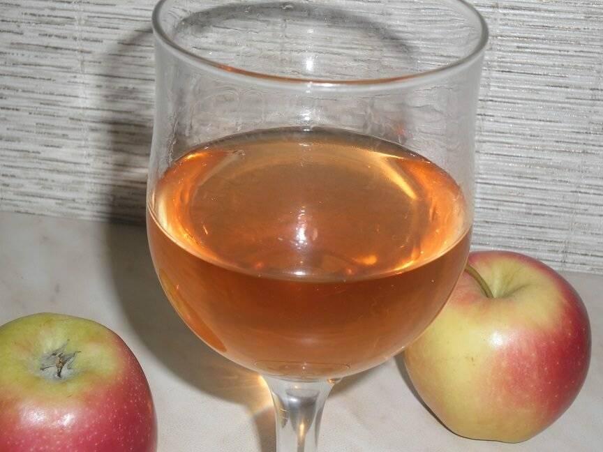 Как приготовить вкусный яблочный квас?