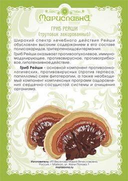 Гриб долголетия рейши лечение грибом рейши | травник