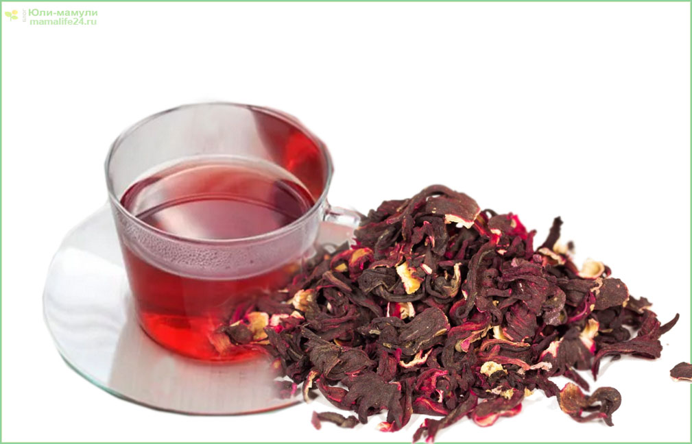 Можно ли употреблять иван-чай при беременности и какие существуют ограничения?