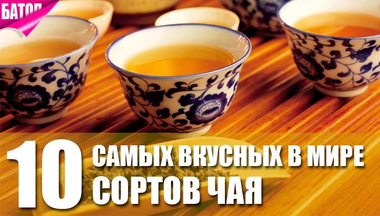 10 самых вкусных сортов чая