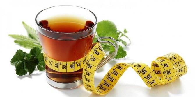 Чай для похудения канкура: отзывы, инструкция, результаты