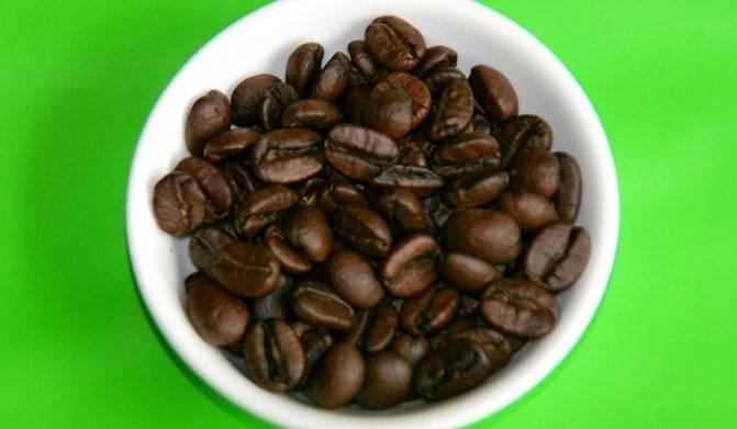 Кофе марагоджип: что это, особенности сорта и описание