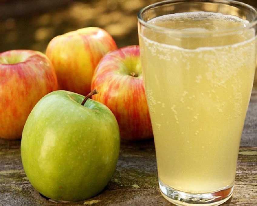 Яблочный квас рецепт с фото пошагово - 1000.menu