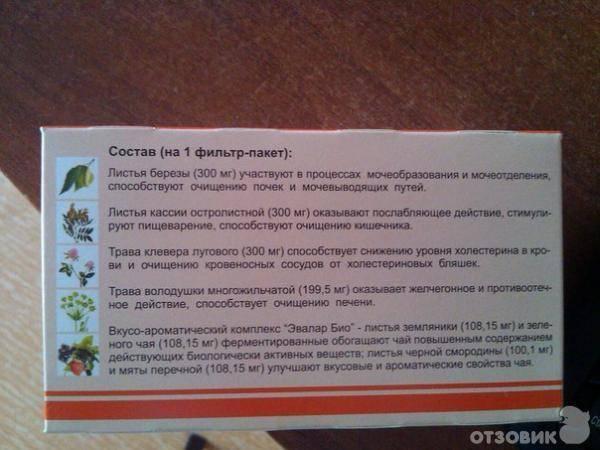 Топ-14 чаев для очищения организма от шлаков и токсинов