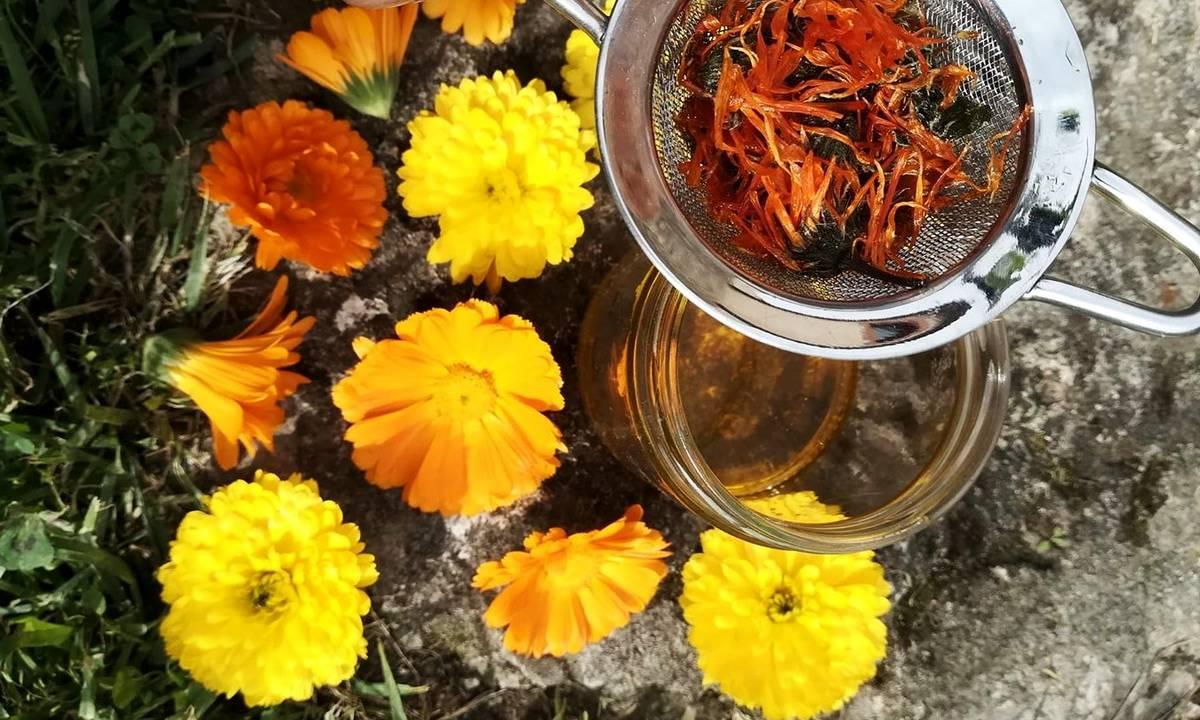 Чай с гвоздикой из недр тысячелетий