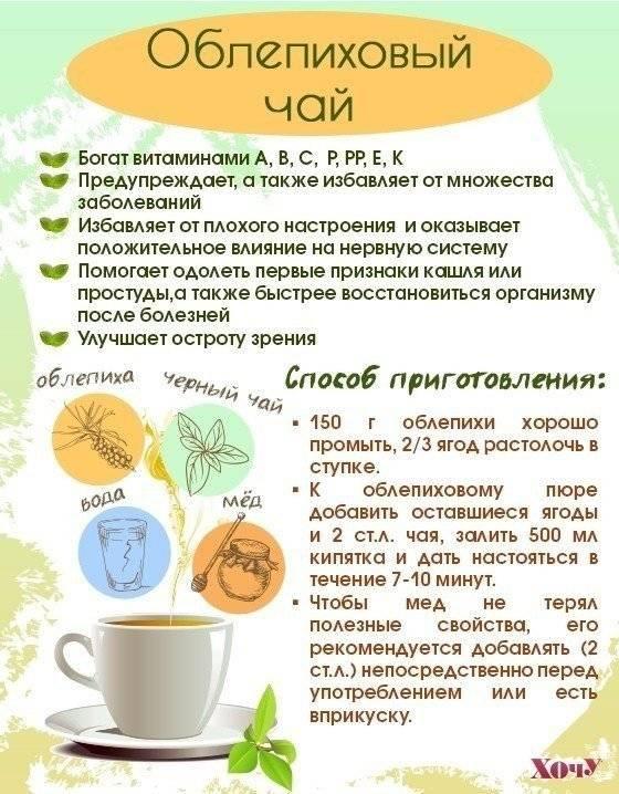 Чаи для иммунитета: с мёдом, имбирём, лимоном, травяные и ягодные