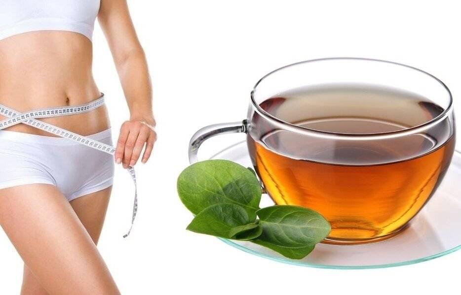 Чай «канкура» для похудения
