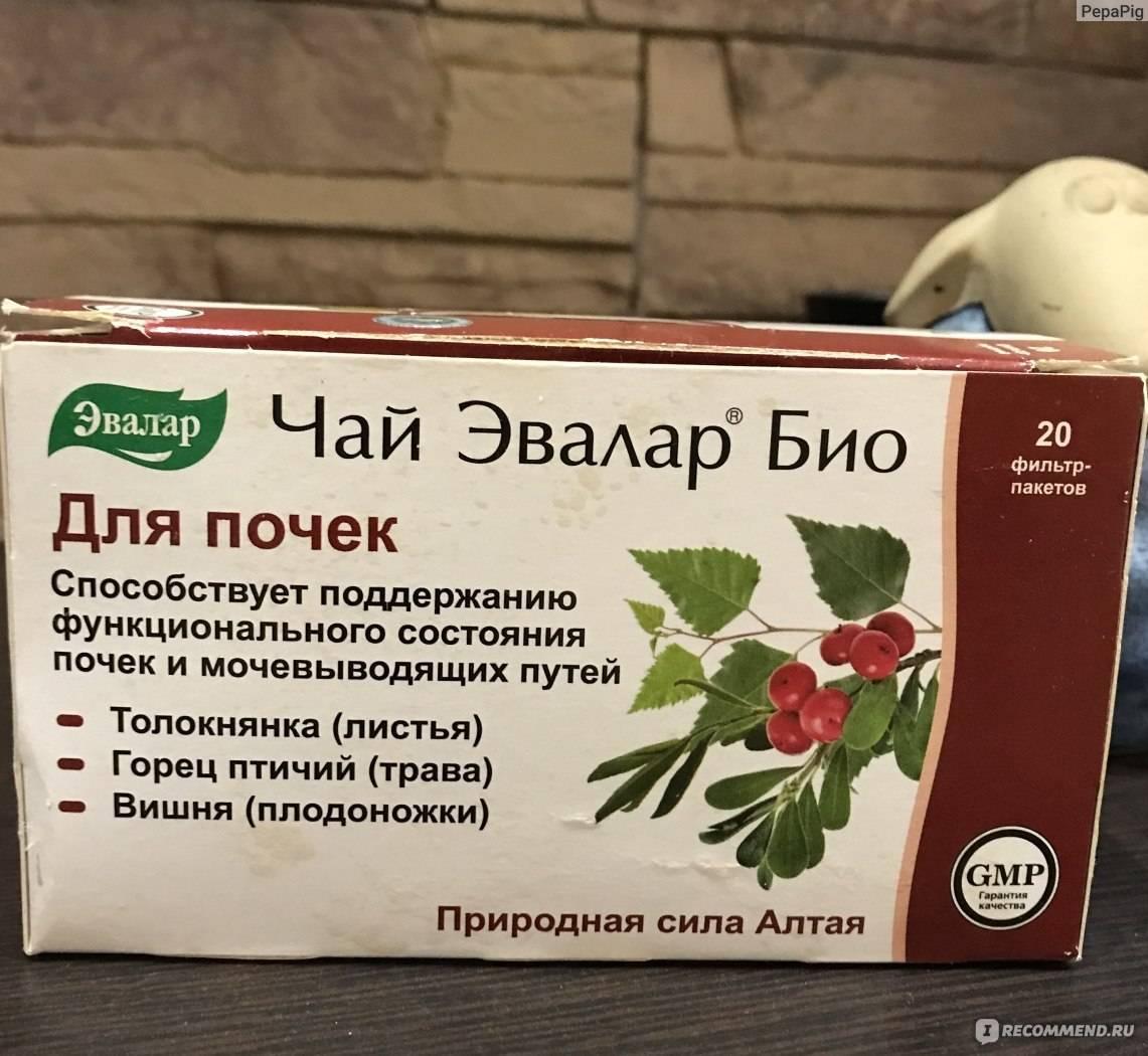 Виды и применение почечного чая при лечении патологий мочевыделительной системы