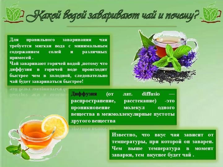 Употребление зеленого чая при беременности и после