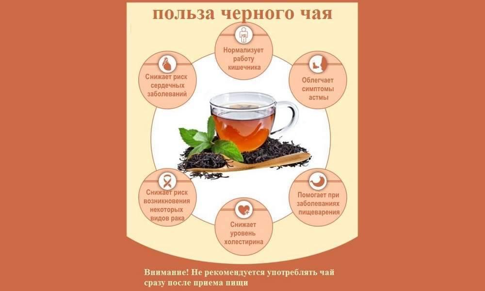 Пить или не пить? 7 главных причин для перехода с кофе на чай