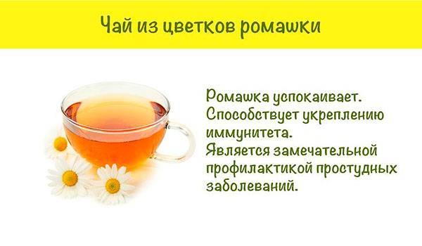 Ромашка при беременности: можно ли пить, на ранних и поздних сроках, чай, отвар, настой, полоскание горла, спринцевание, подмывание, промывание носа, от кашля, противопоказания, при простуде
