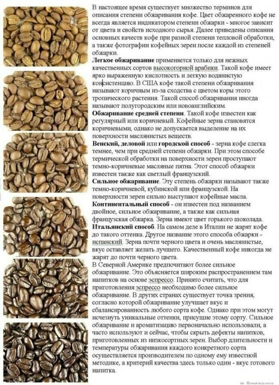 Хороший зерновой кофе - 11 признаков по которым его можно определить