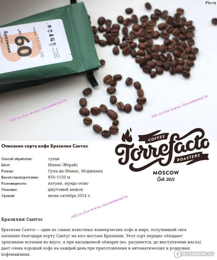 Бразильский кофе   сорта кофе