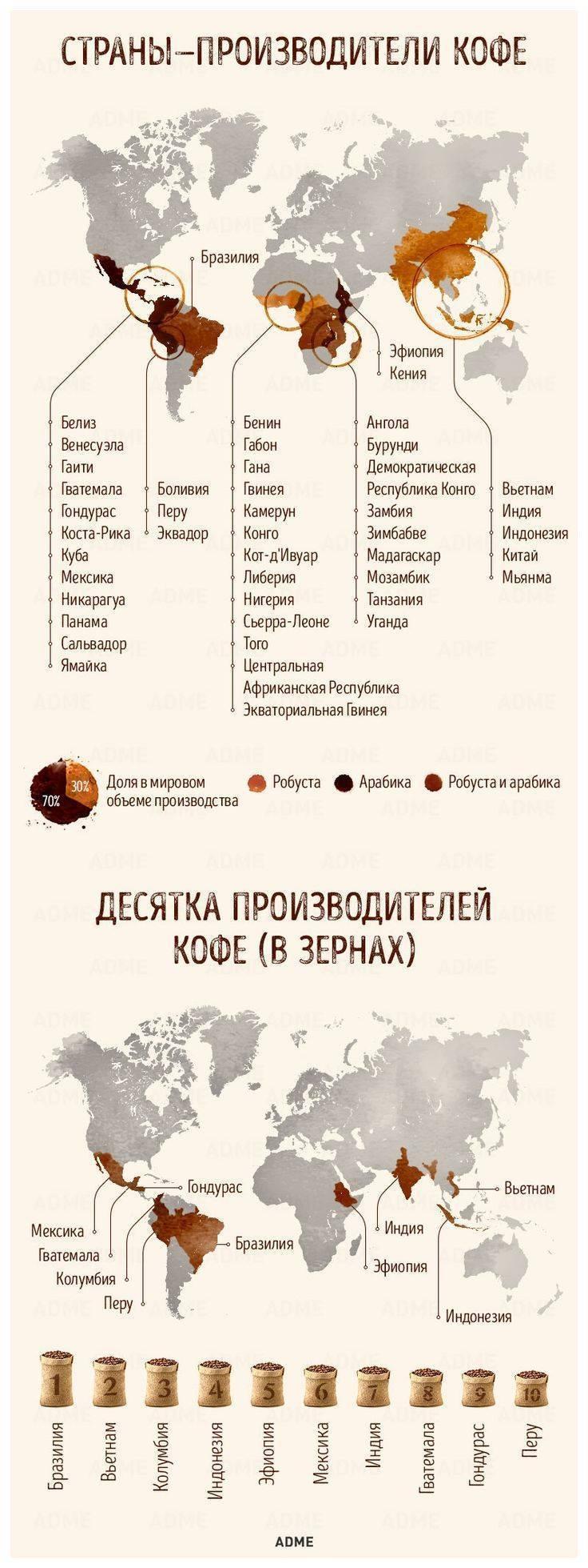 Кофе в зернах: виды кофейных деревьев, рейтинг стран-производителей и известных брендов