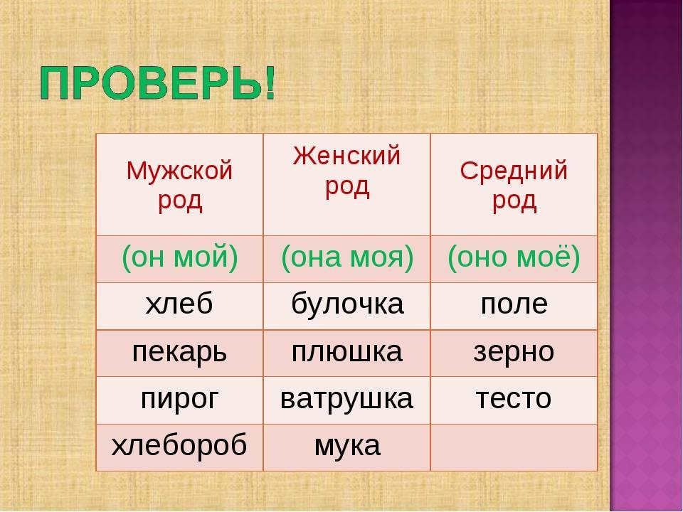 Почему кофе – «он» и другие загадки русского языка