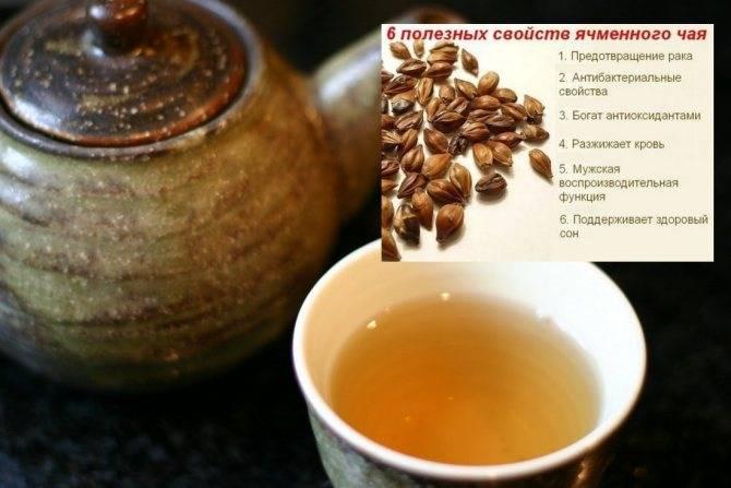Ячменный кофе: польза и вред для здоровья, противопоказания к употреблению напитка