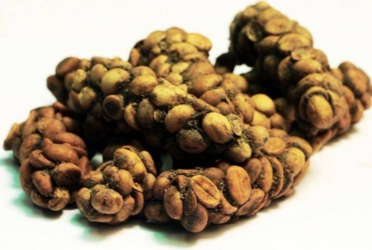Кофе лювак копи из какашек, название напитка из кала животных из вьетнама