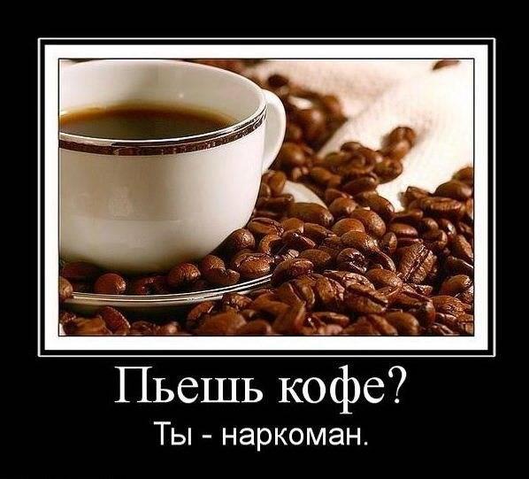 Правильный кофе-брейк,или о том, как я бросил пить кофе | крамола