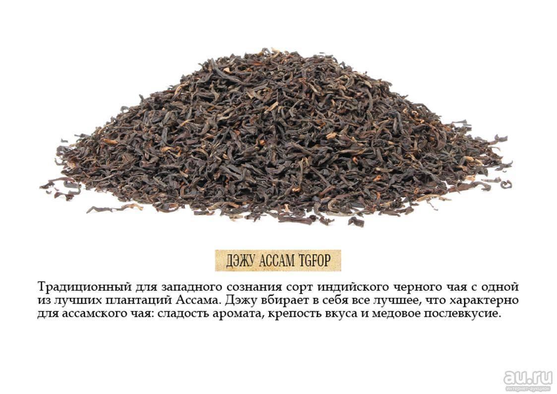 Чай ассам: описание и польза для здоровья