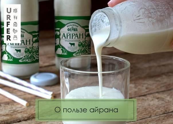 Напиток айран: польза и вред для организма