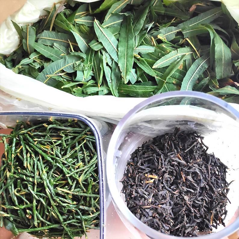 Иван-чай ферментированный: лечебные свойства и противопоказания как ферментировать в домашних условиях отзывы