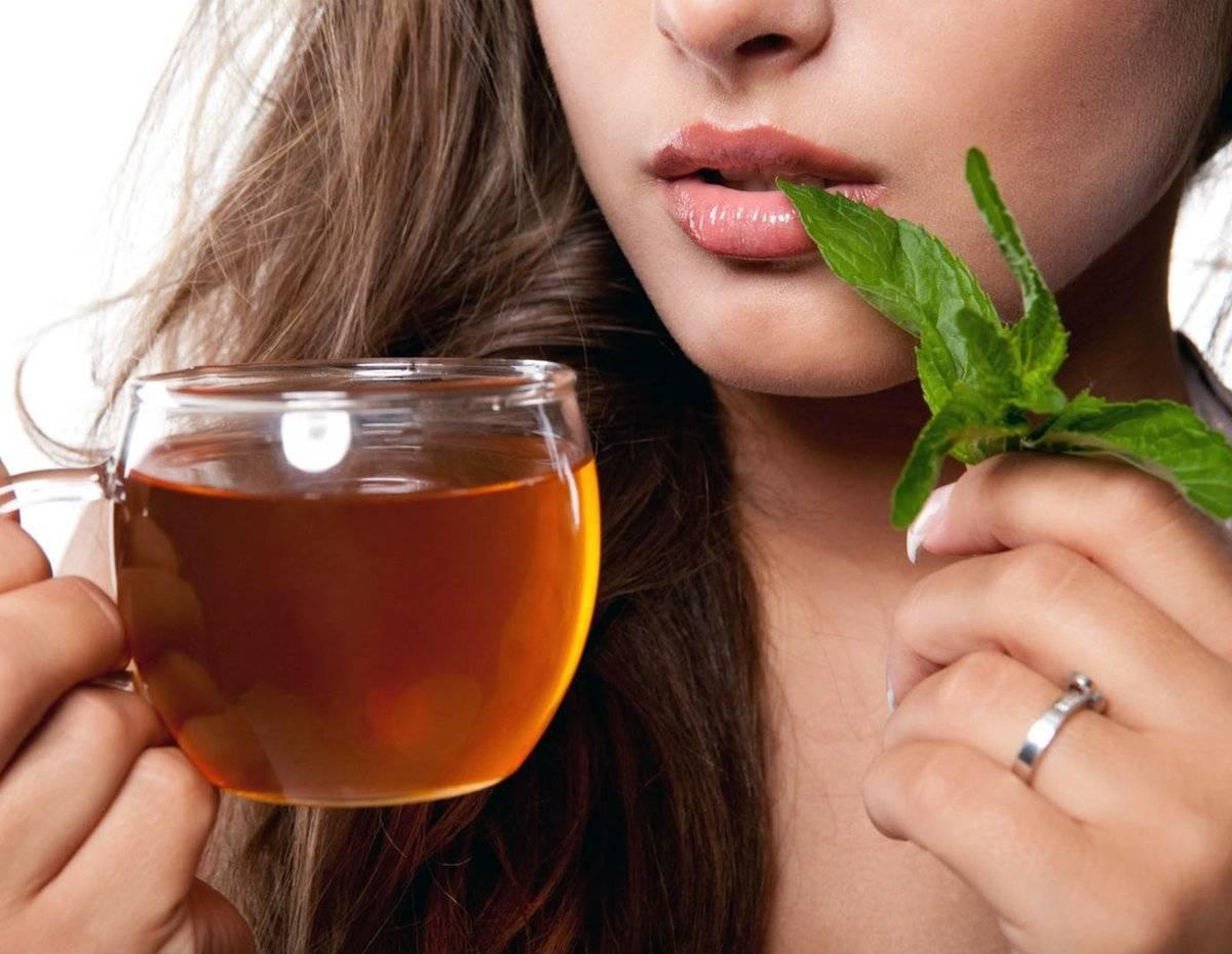Чай с мятой — польза и вред, рецепты, противопоказания