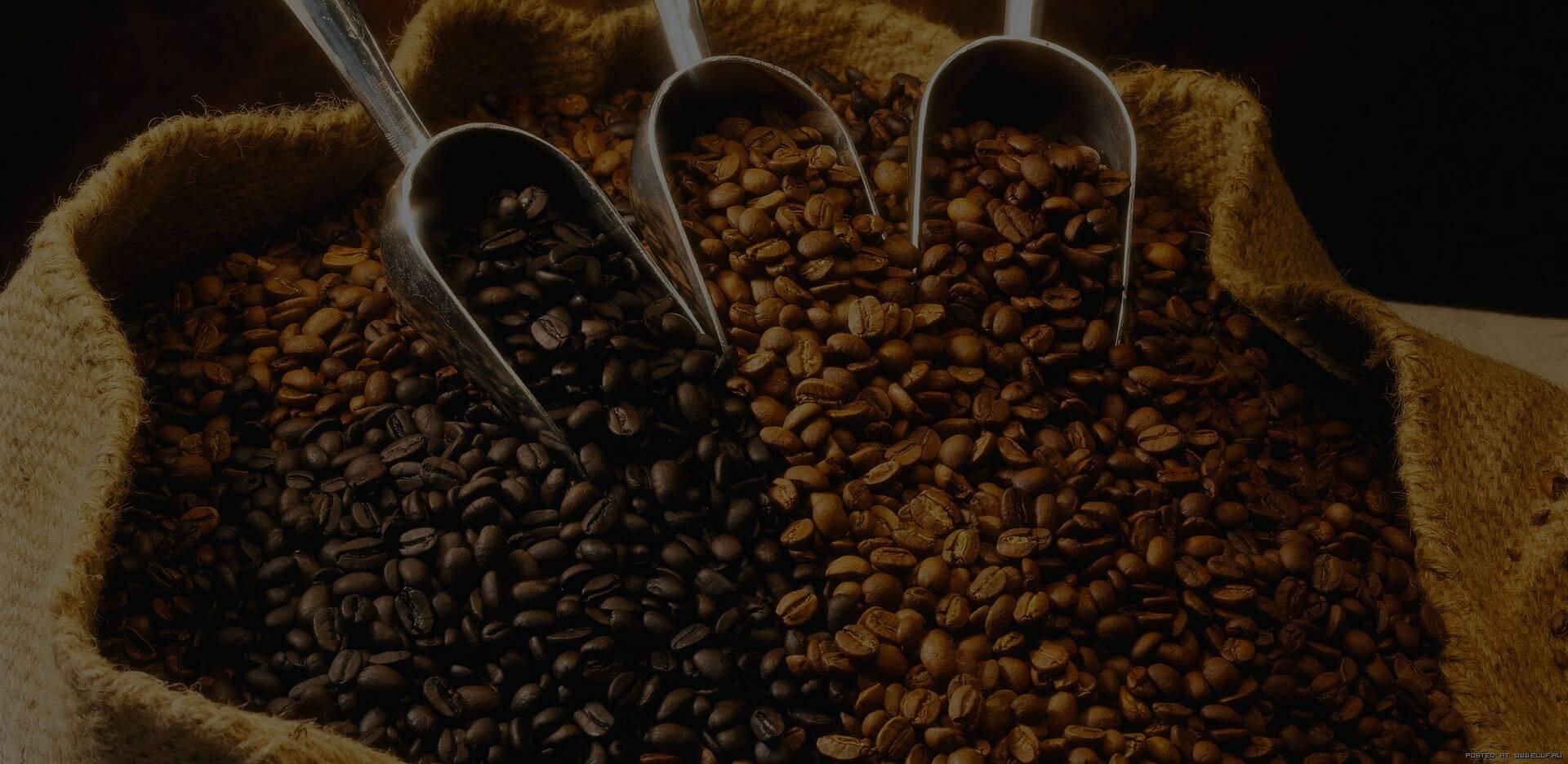 Рейтинг кофе в зернах – какой лучше выбрать для кофемашины? топ 10 самых вкусных вариантов